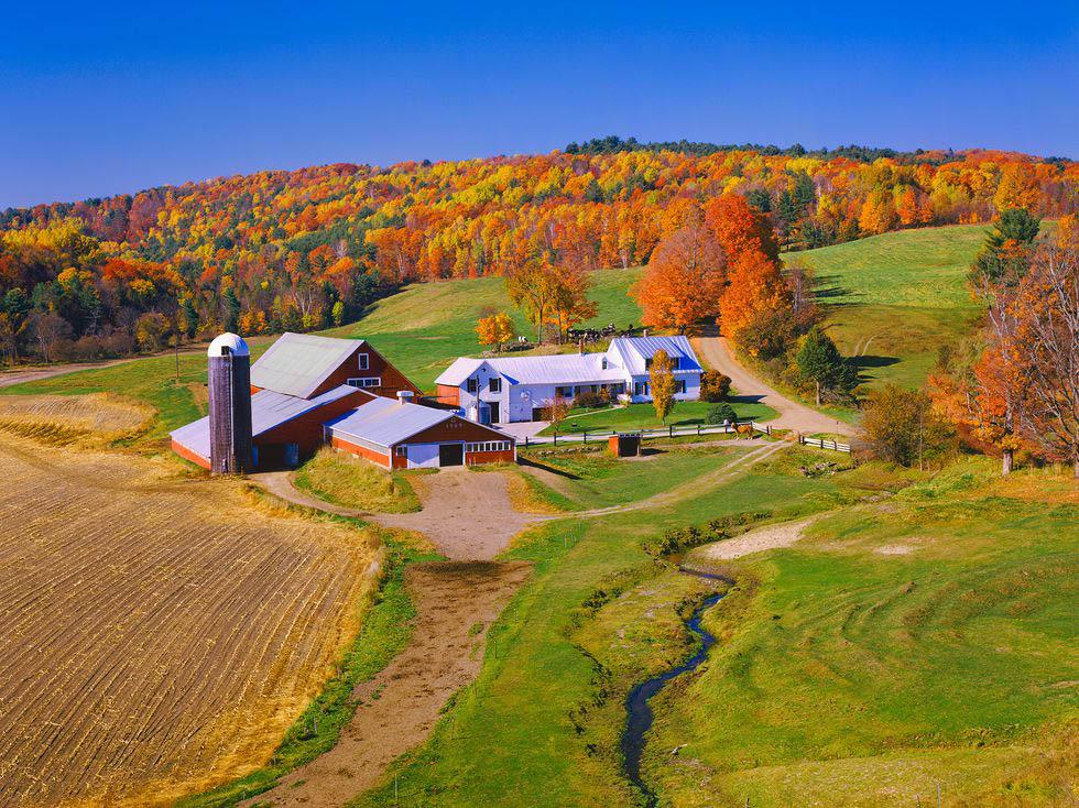 mùa thu ở vùng quê