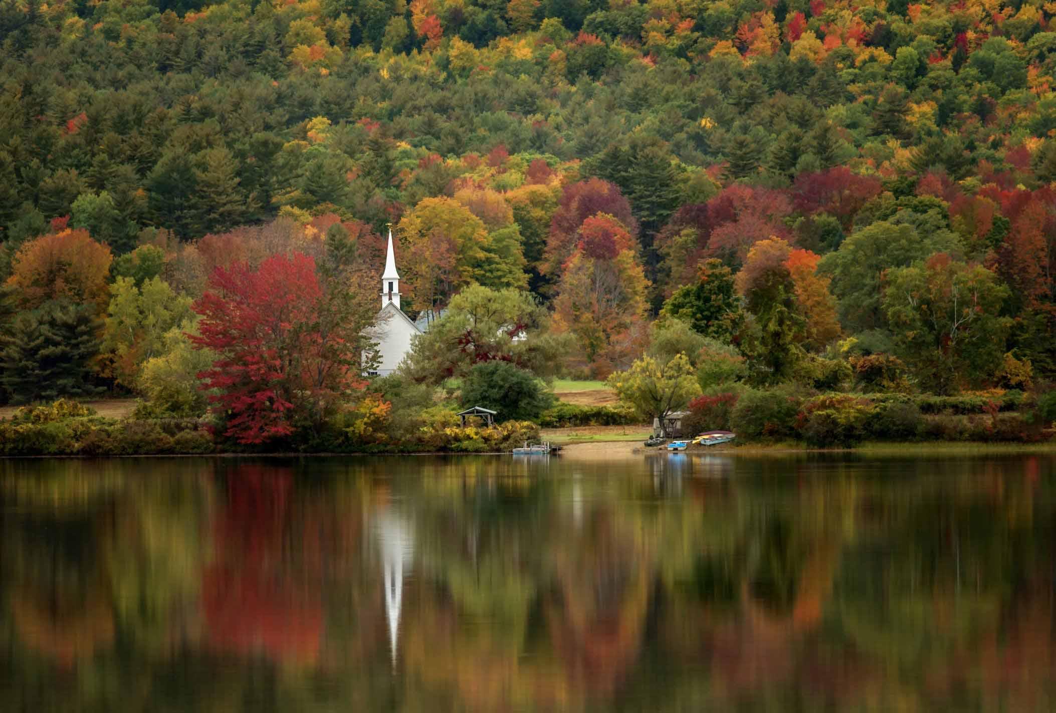 mùa thu rặng cây