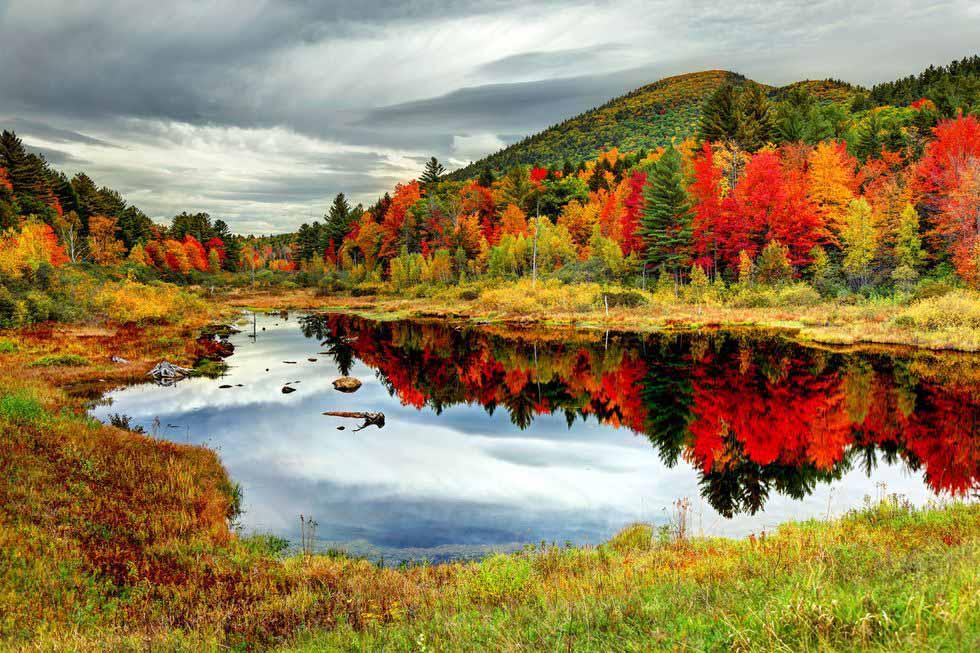 mùa thu sắc đỏ