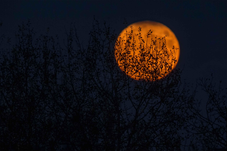 trăng mùa thu