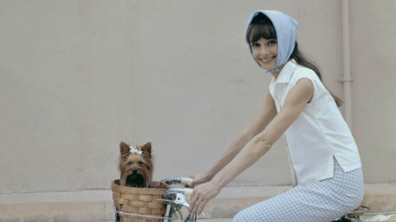 Học Audrey Hepburn bí quyết mặc đẹp và thanh lịch với khăn lụa