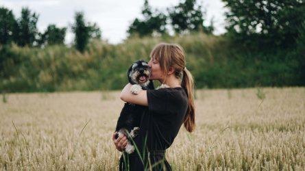 Tại sao người hướng nội dễ cảm thấy gần gũi với thú cưng?