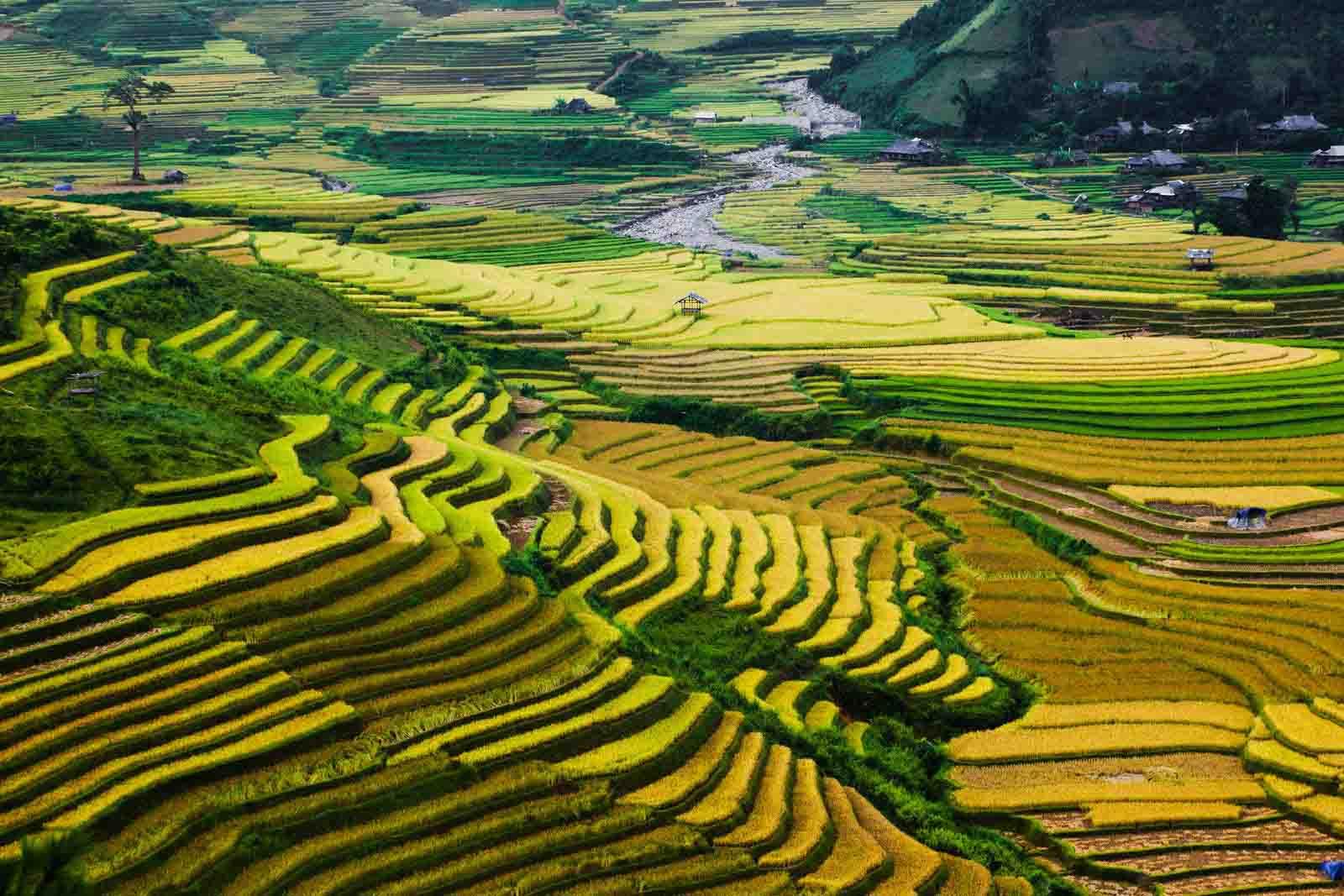 địa điểm tú lệ vietnam