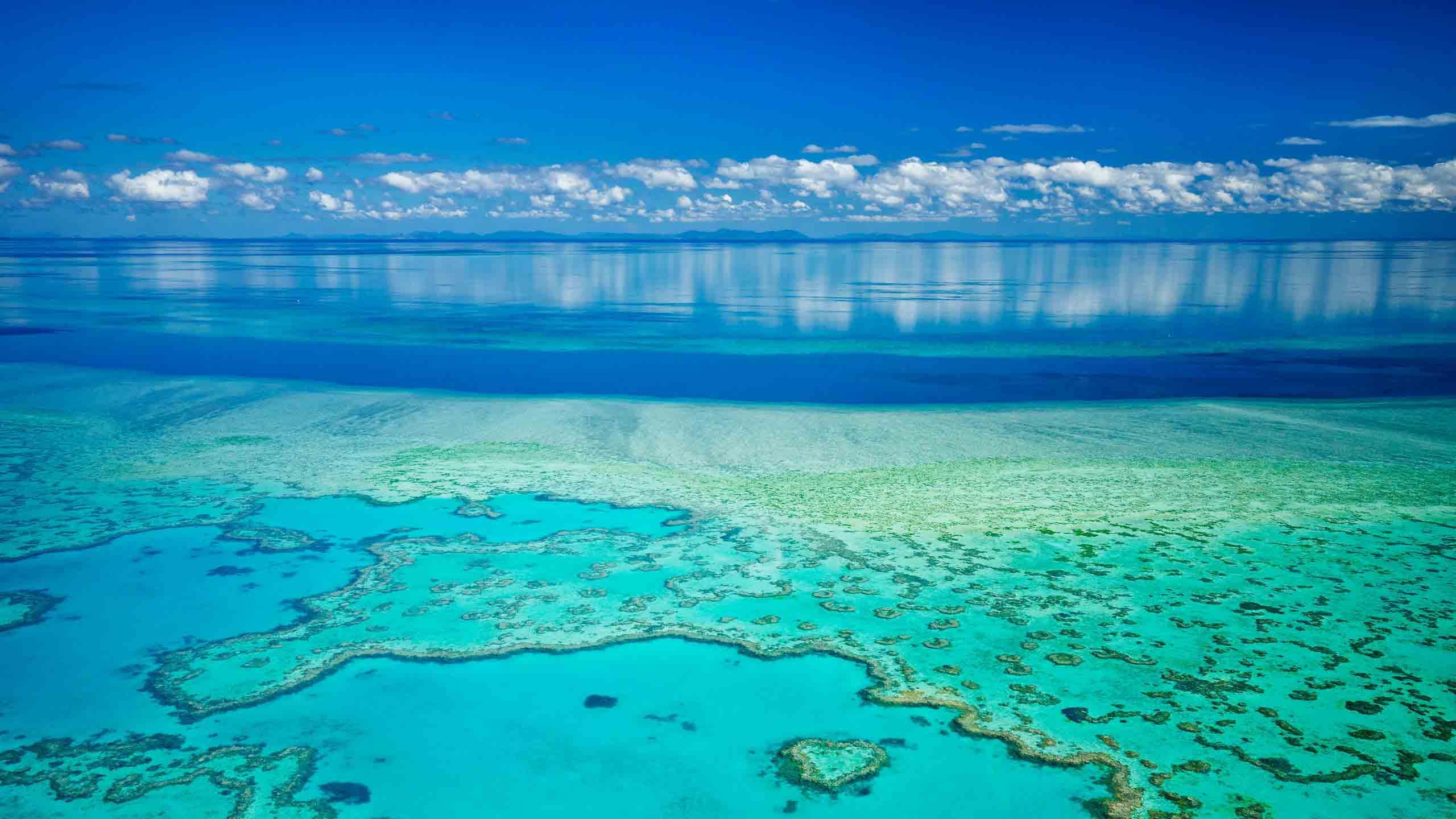 địa điểm rạn san hô