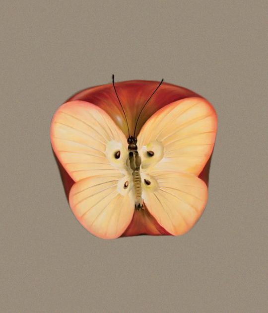 trắc nghiệm quả táo cánh bướm
