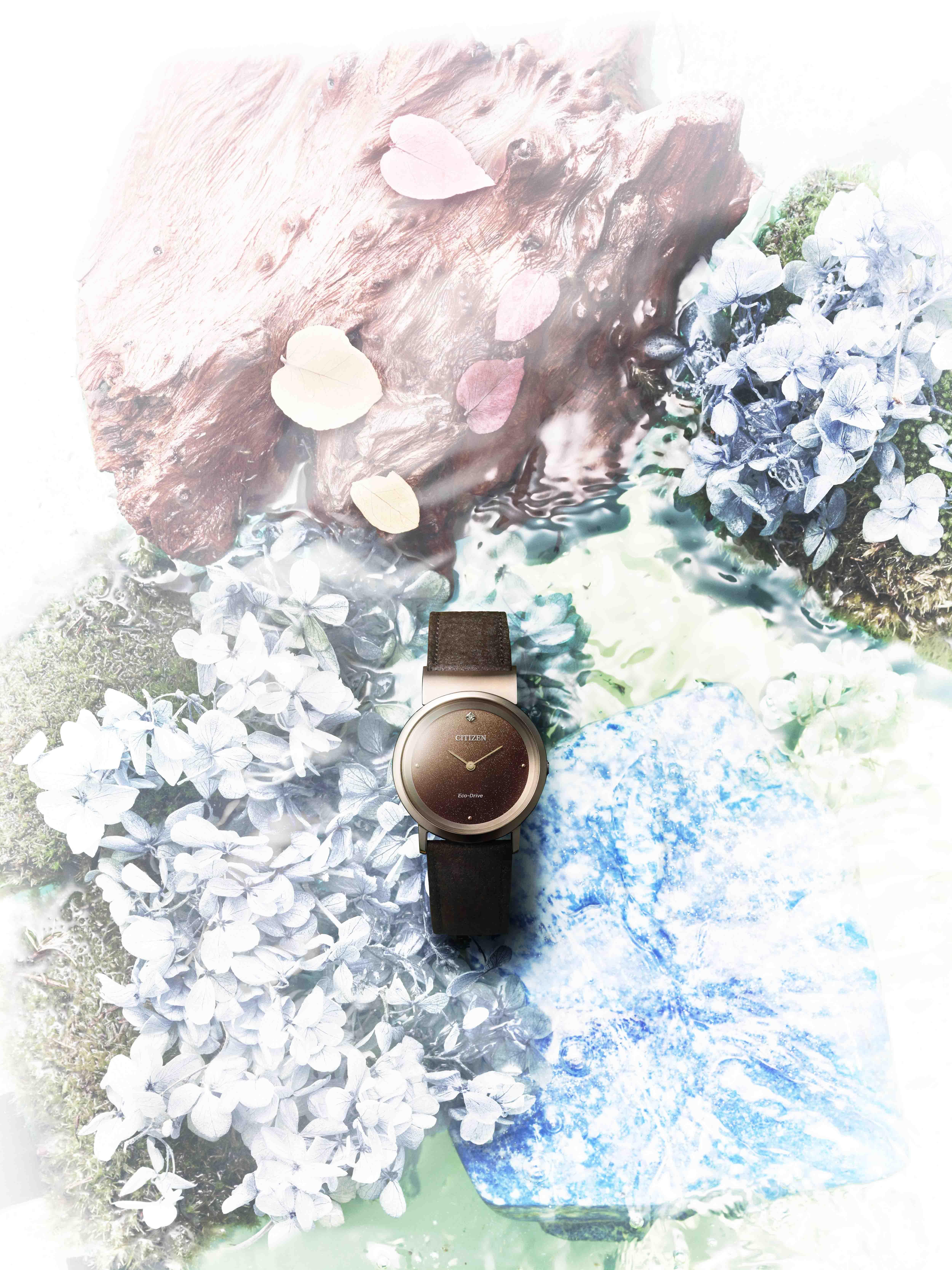 đồng hồ Citizen Earth