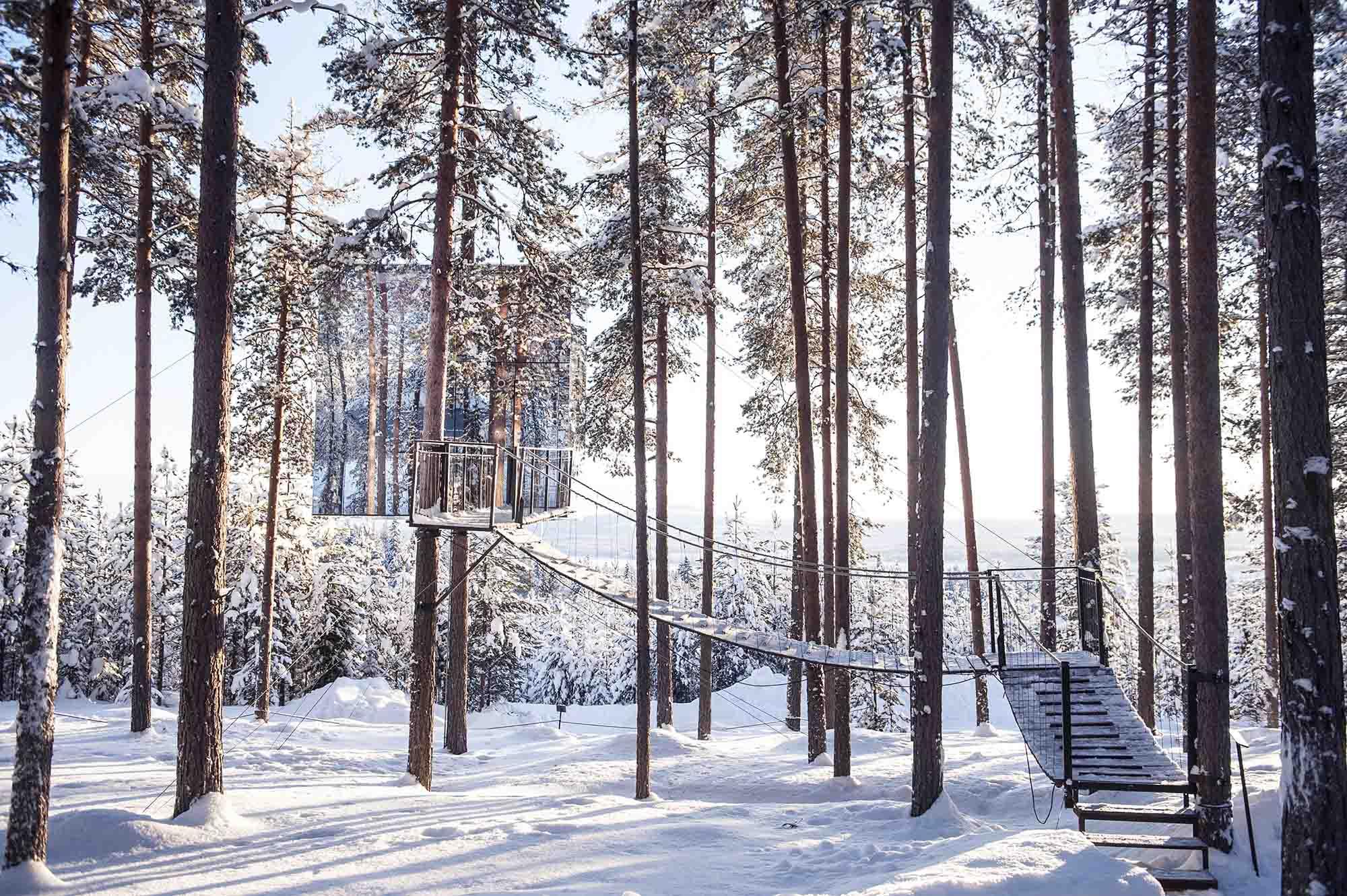 nhà trên cây làm bằng kính