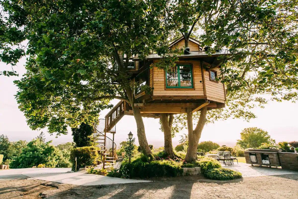nhà trên cây toàn cảnh
