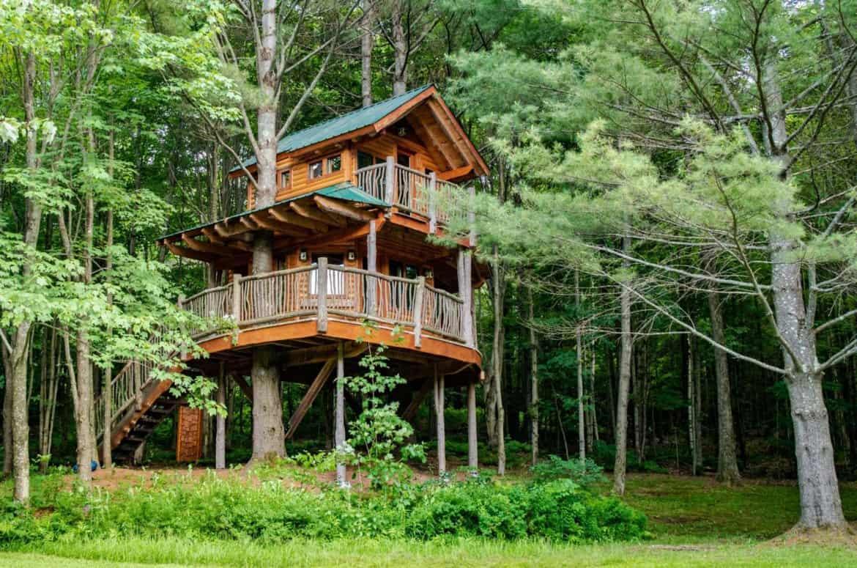 nhà trên cây Green Mountain Treehouse