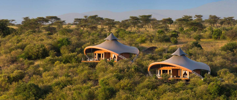 nhà trên cây cắm trại