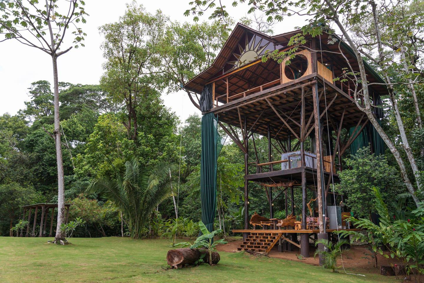 nhà trên cây trong rừng
