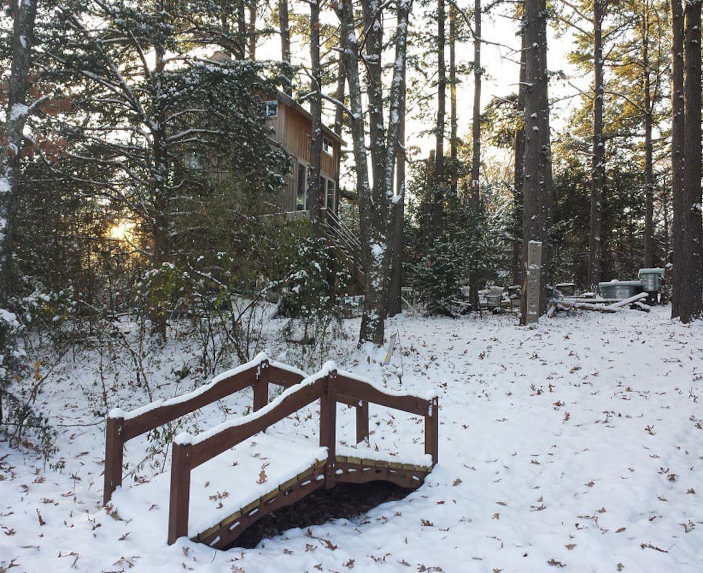 nhà trên cây tuyết rơi