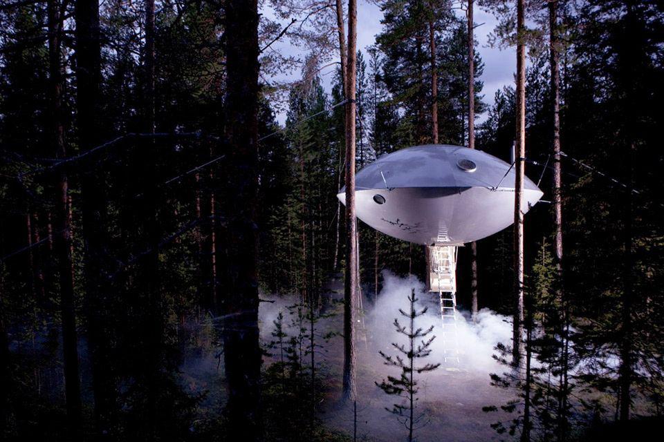 nhà trên cây ufo