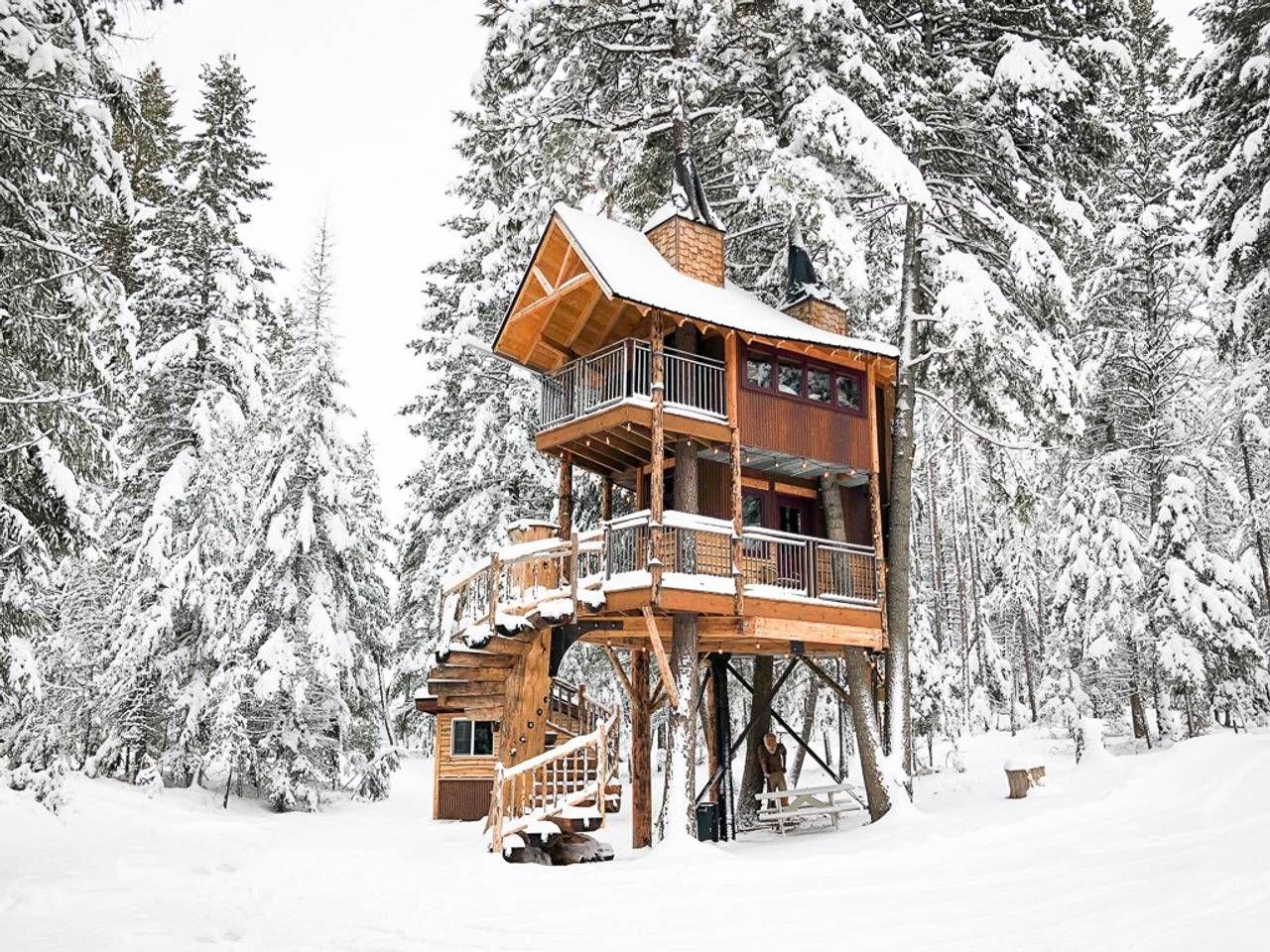 tuyết phủ nhà trên cây
