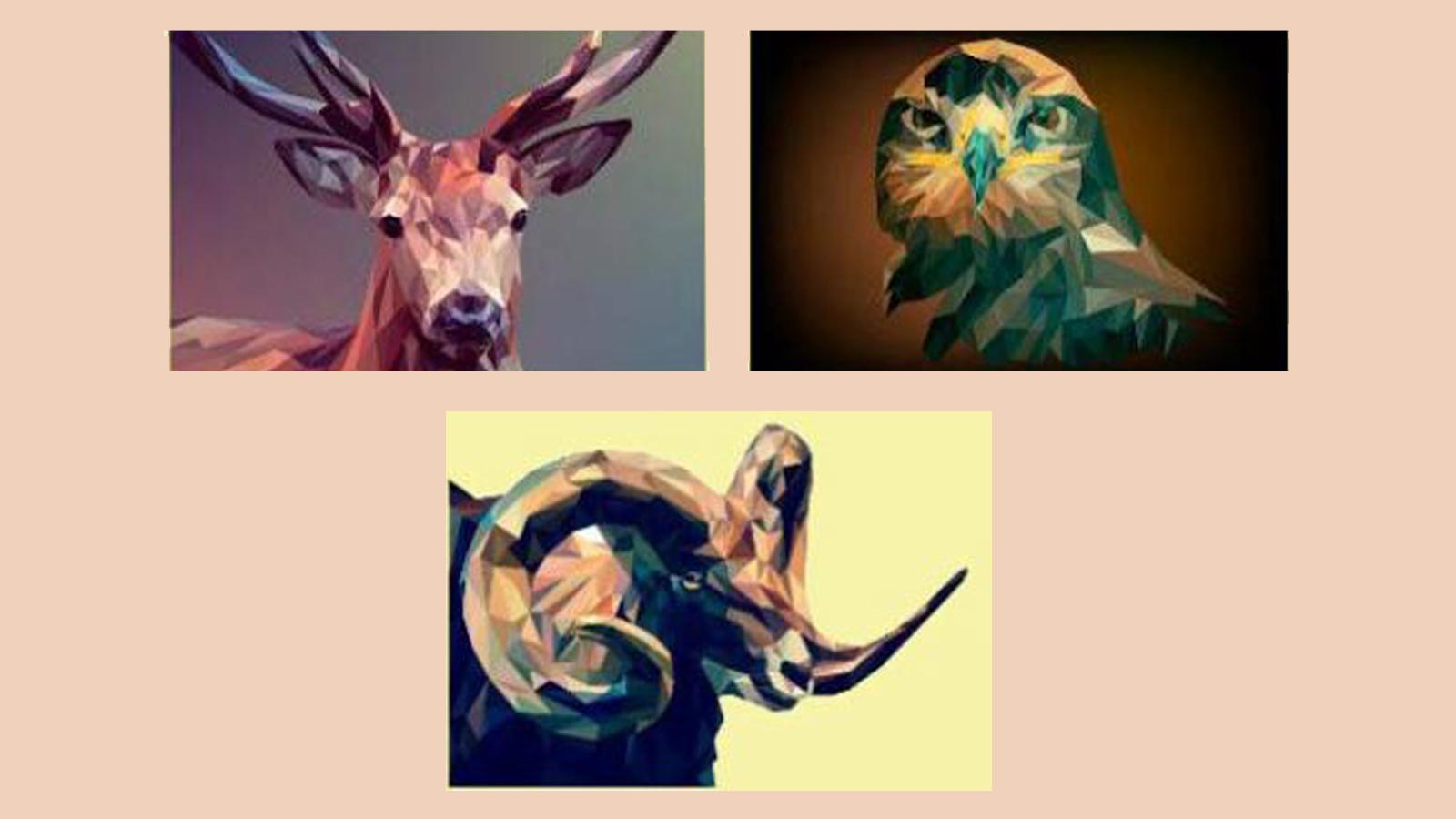 trắc nghiệm hình ảnh động vật