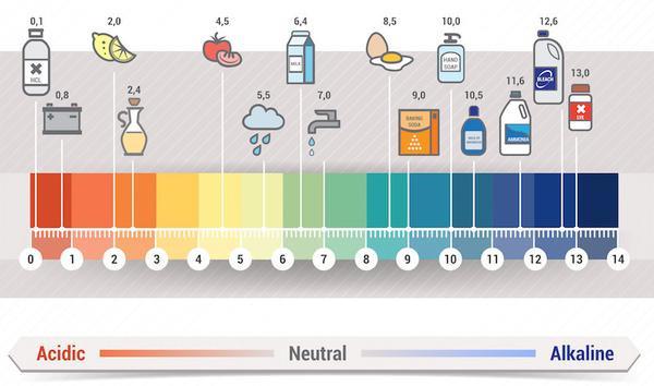 Cân bằng độ pH5.5 cho da – Bí mật của làn da luôn khỏe đẹp