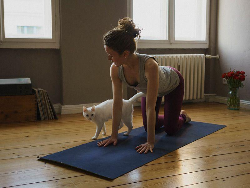 Tập yoga tư thế con bò