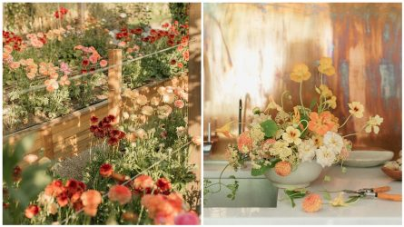 Những tài khoản Instagram bạn nên theo dõi nếu yêu thích nghệ thuật cắm hoa