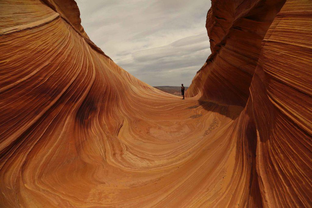 hình ảnh đẹp của The Wave