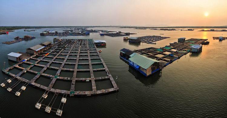 Du lịch Hồ Tràm - Bè hàu Long Sơn