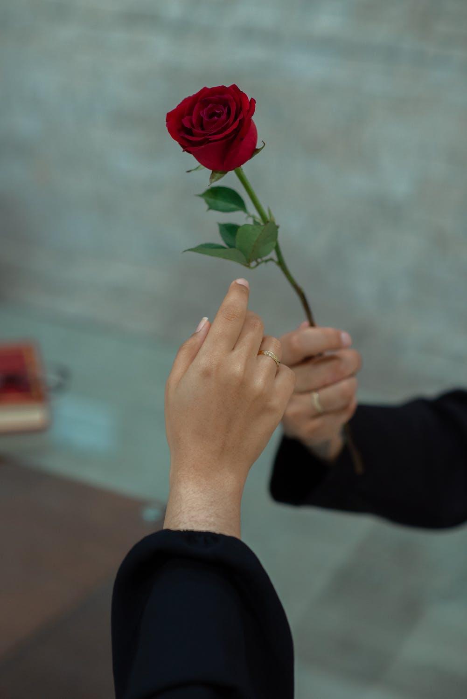 tặng hoa là một loại của ngôn ngữ tình yêu và trắc nghiệm