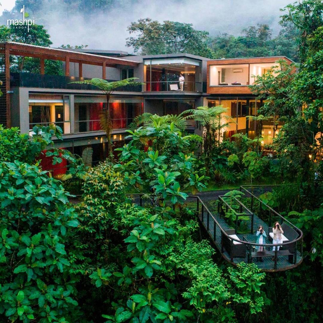 Mashpi Lodge, Ecuador thân thiện với môi trường