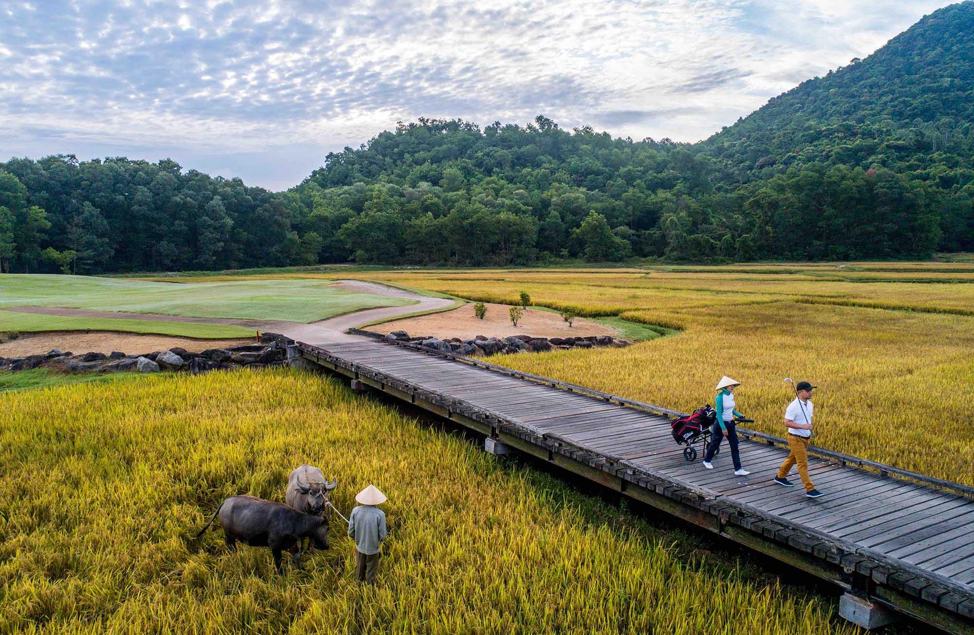 Du lịch bền vững Banyan Tree Lăng Cô