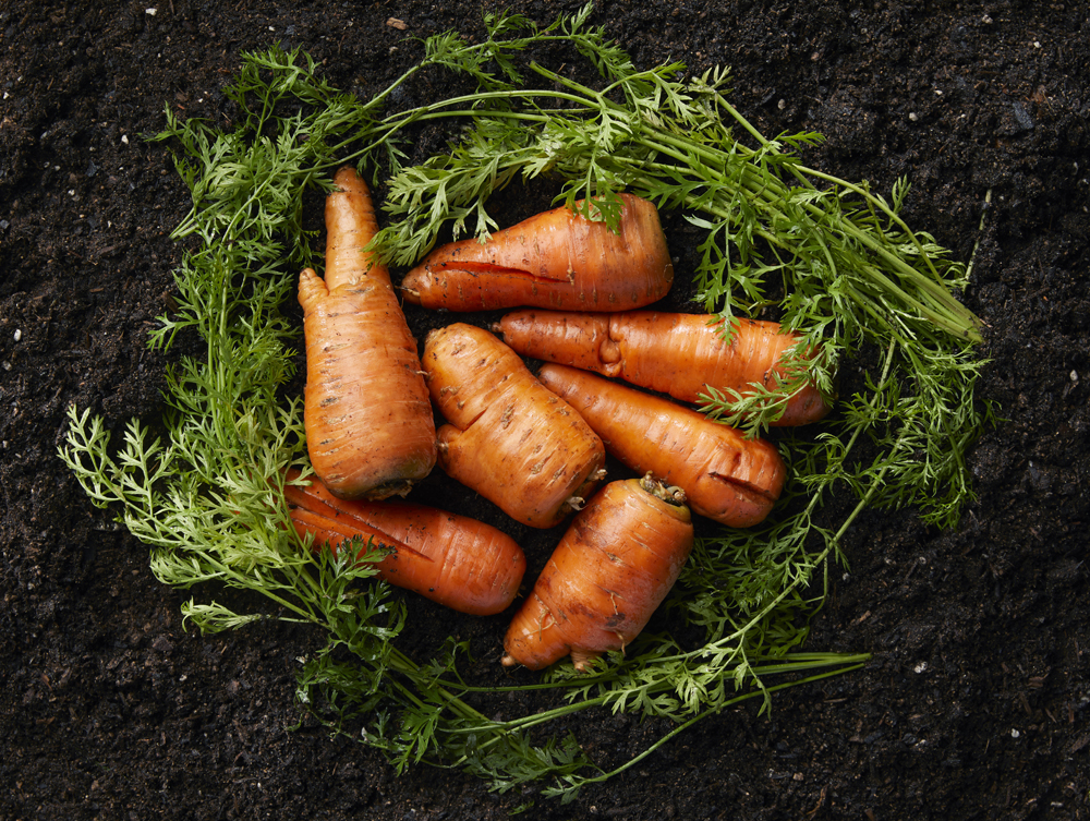 dưỡng tay innisfree ugly carrot