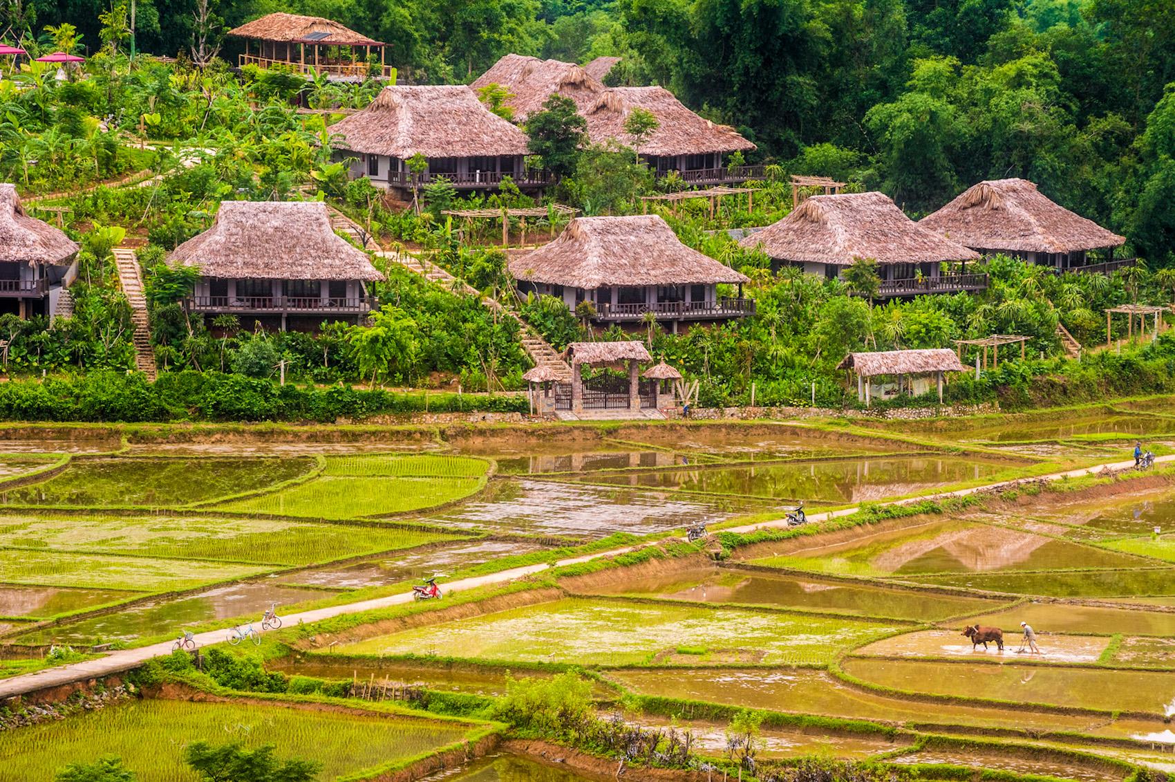 nghỉ dưỡng Mai Châu Ecolodge