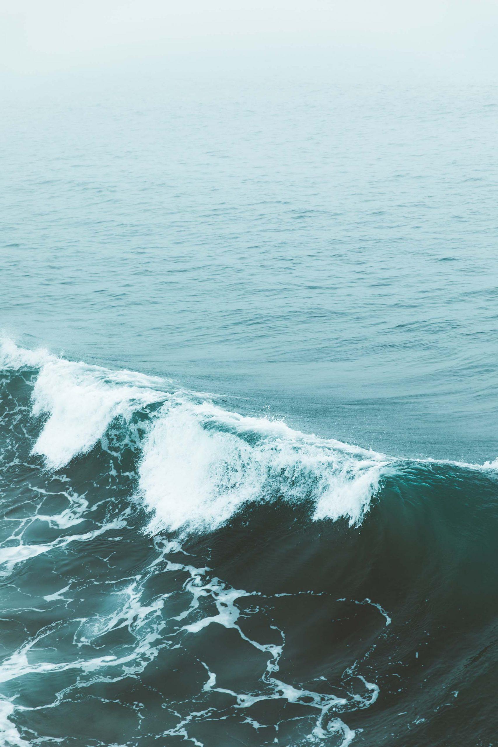 Giải mã giấc mơ, ác mộng về con sóng