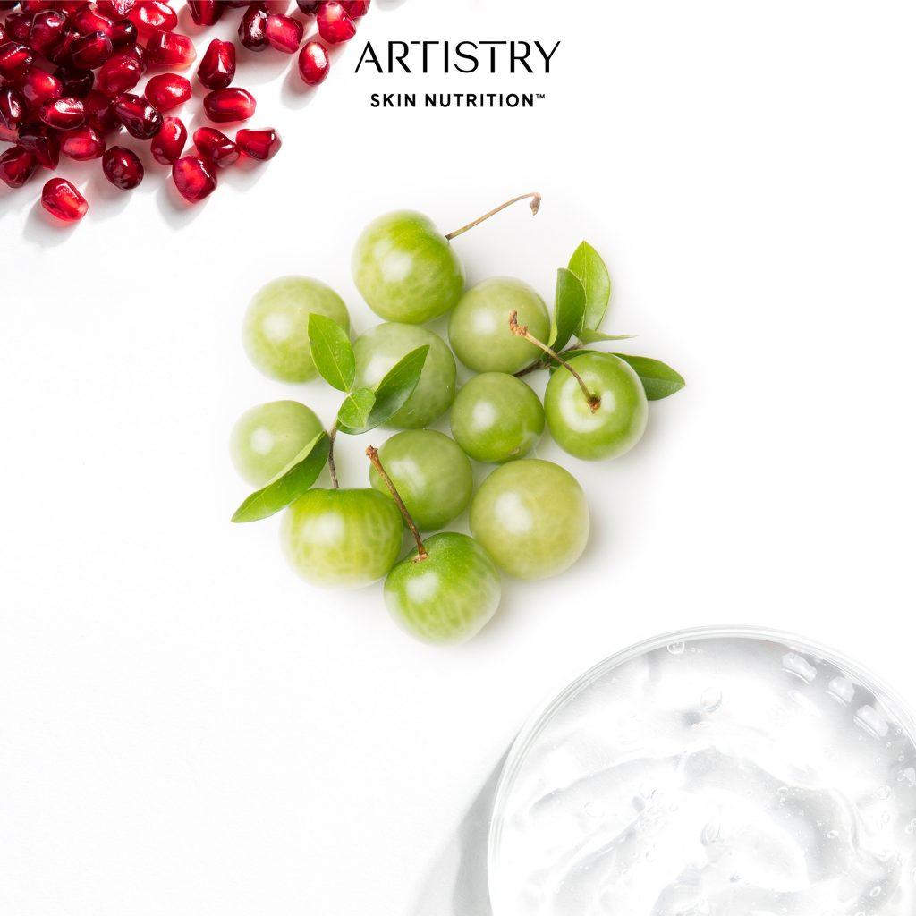 Artistry Skin NutritionTM là kết tinh từ dưỡng chất thực vật tinh khiết và tinh hoa từ khoa học làn da