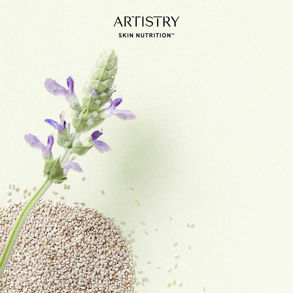 dưỡng da Artistry