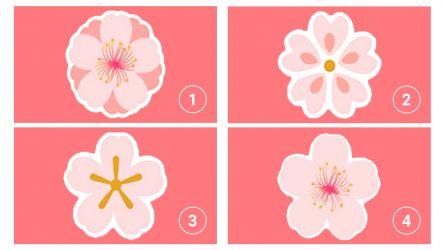 """Trắc nghiệm: Chọn một bông hoa đào và khám phá lý do đối phương """"phải lòng"""" bạn"""