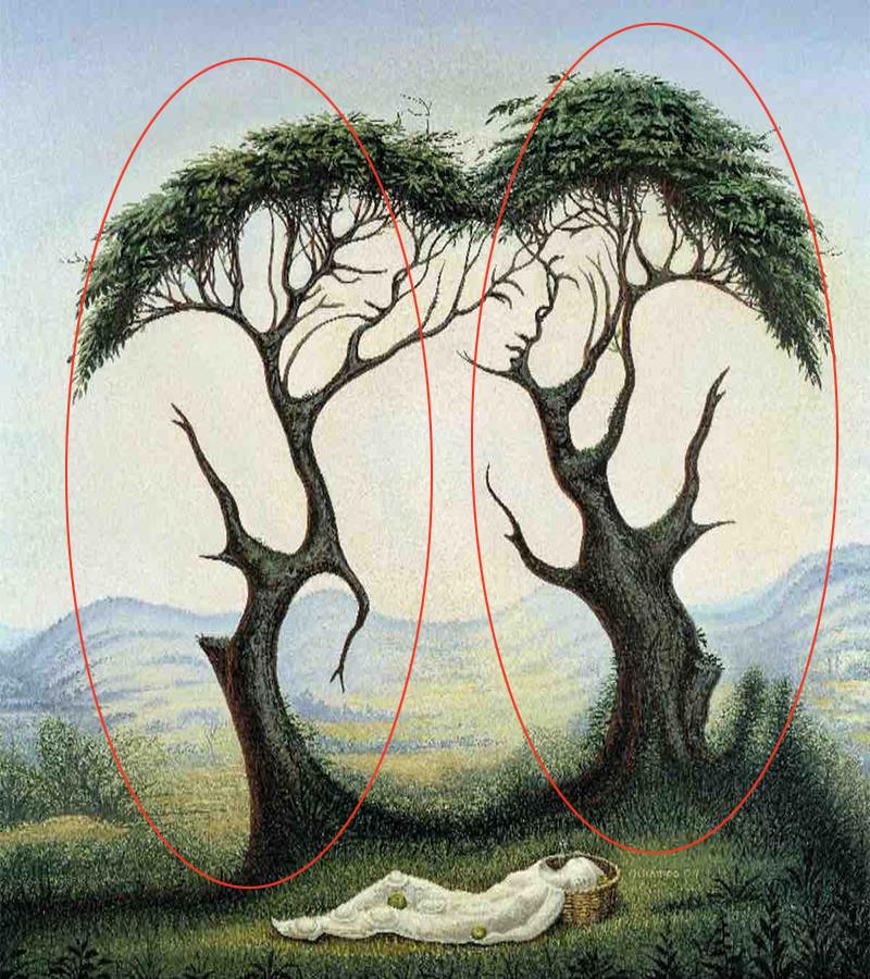trắc nghiệm hình ảnh cô gái và cái cây 2