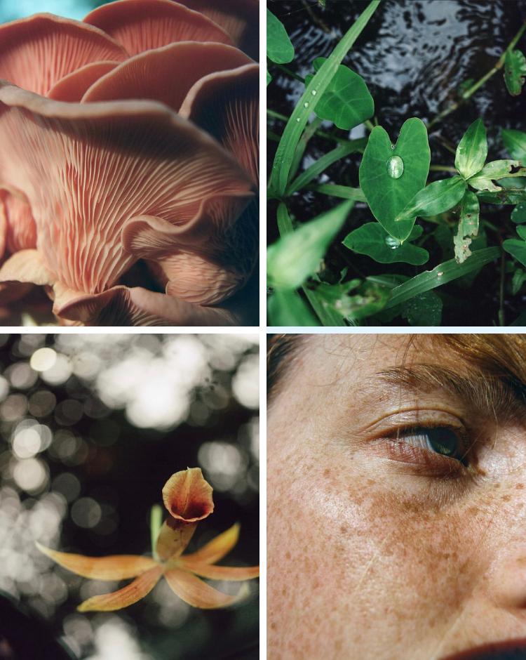 Ảnh Instagram của Chloé về thông điệp kết nối thiên nhiên
