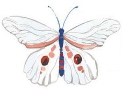 trắc nghiệm tính cách con bướm đầu tiên