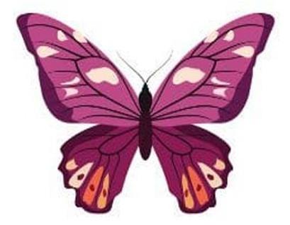 trắc nghiệm tính cách con bướm thứ năm