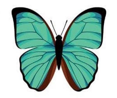 trắc nghiệm tính cách con bướm thứ sáu