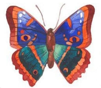 trắc nghiệm tính cách con bướm thứ tư