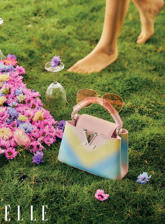 phụ kiện túi Louis Vuitton