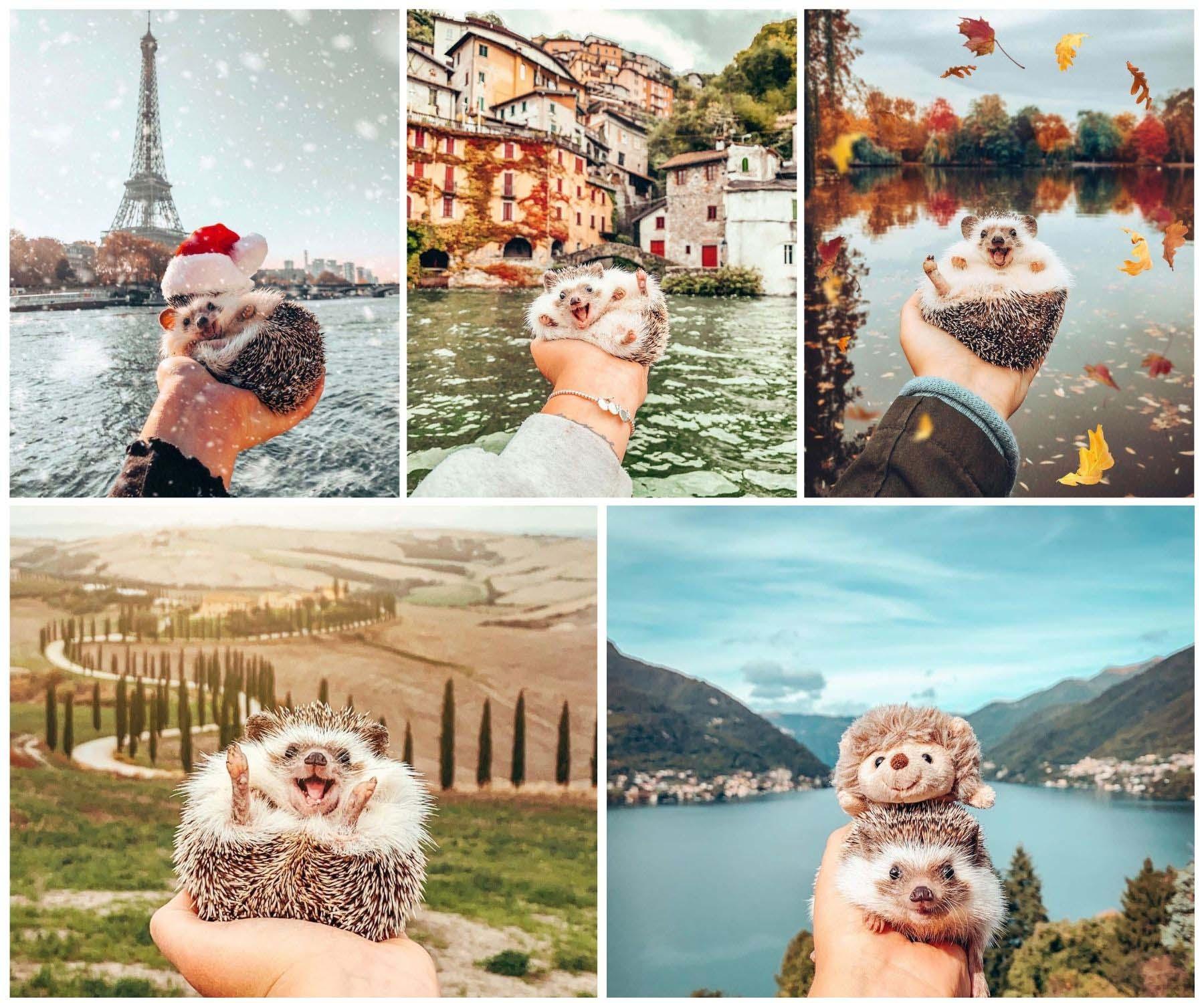 tài khoản instagram du lịch mr pokee