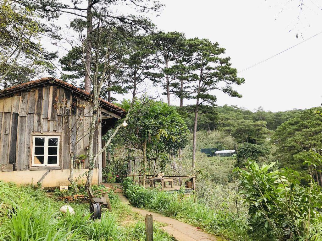Đà Lạt căn nhà homestay