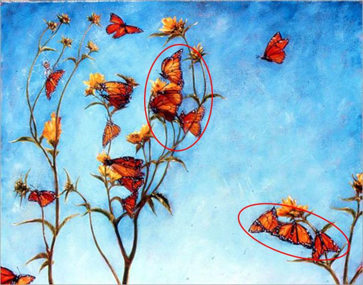 trắc nghiệm những con bướm