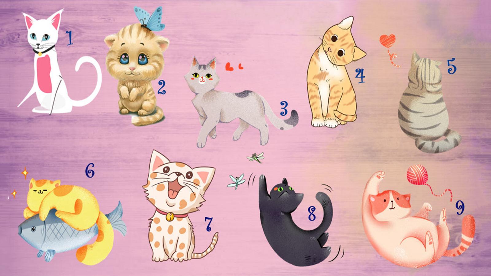 trắc nghiệm khả năng giao tiếp qua chú mèo