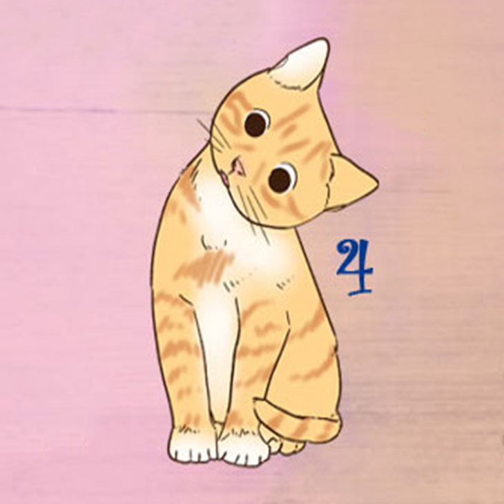 trắc nghiệm chú mèo tiết lộ kỹ năng giao tiếp