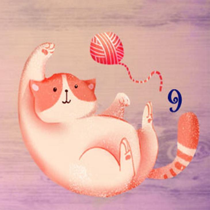 khả năng giao tiếp qua chú mèo 9
