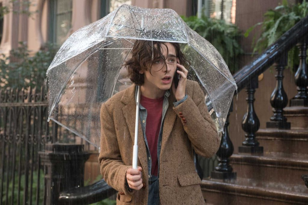 Timothee Chalamet che dù ngày mưa