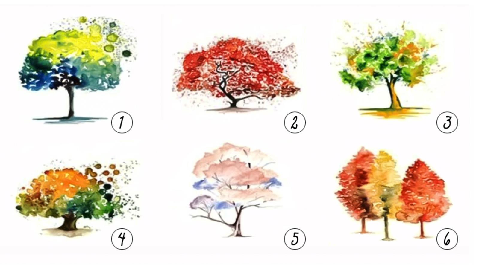 trắc nghiệm hình ảnh cây cối